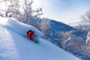 ファットスキーの選び方|パウダーを思いのままに滑りたい!