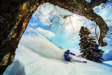 妙高エリア|妙高山麓に広がる豪雪エリアは日本が誇るスノーパラダイス