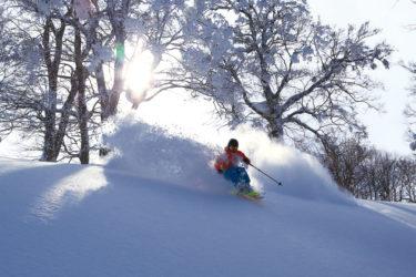 自然地形・フリーライドがおもしろい|全国のおすすめスキー場