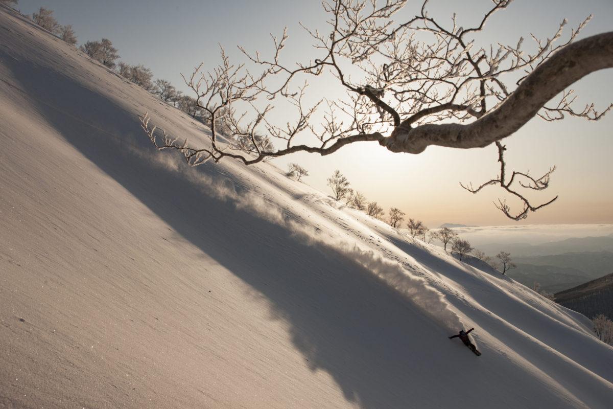 Snowboarder/Takashi Minamiura Location/Hakuba、Nagano、JPN