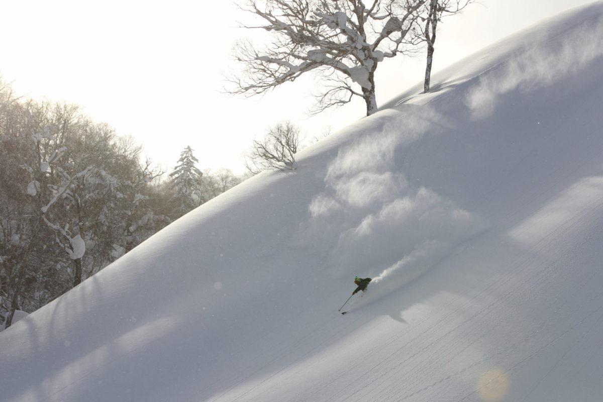 Telemark Skier/Hideyuki Nagashima Location/Sapporo BC、Hokkaido、JPN