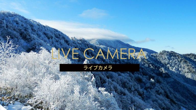 ライブ カメラ 温泉 スキー 場 蔵王