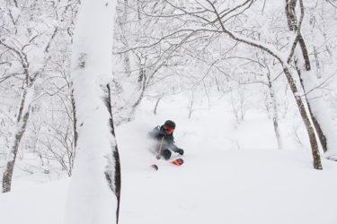 おすすめツリーラン!|  夏油高原スキー場  | 「エリアのレベルでステップアップできる」新コンセプトで生まれ変わり!